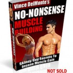 No-Nonsense Muscle Building Program free pdf download