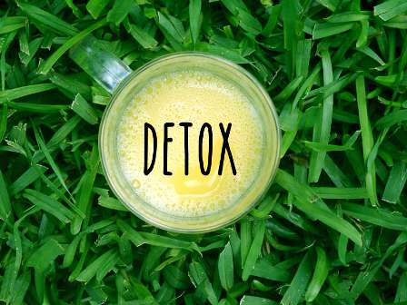 Total Detox Friend free pdf download