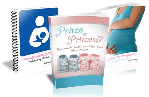 Plan My Baby aka Prince or Princess - Steps Towards Choosing Your Baby's Gender Prior to Conception free pdf download