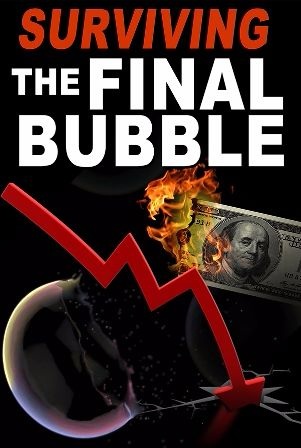 Surviving The Final Bubble ebook free pdf download