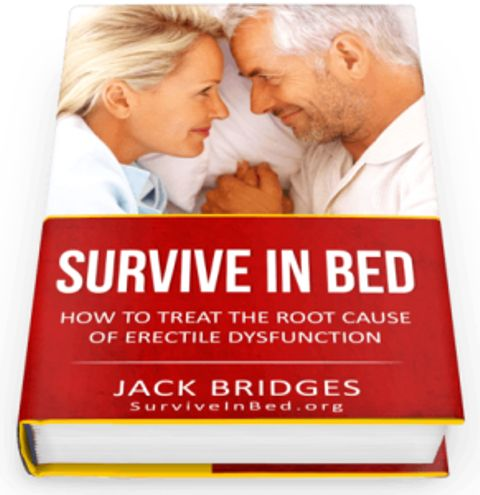 Survive In Bed book cover