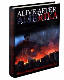 Alive After Amerika e-cover