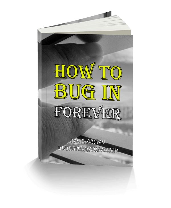 How To Bug In Forever e-cover