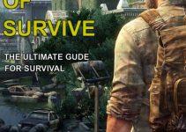 Momentum of Survive e-cover