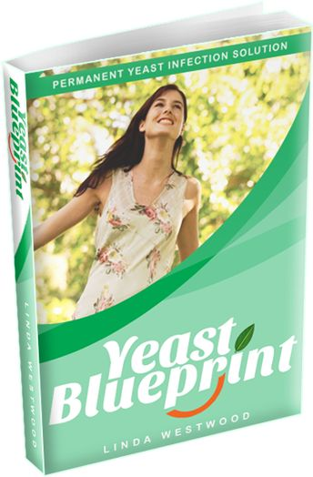 Yeast Blueprint e-cover