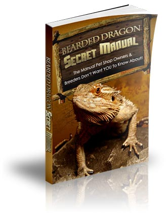 Bearded Dragon Secret Manual e-cover