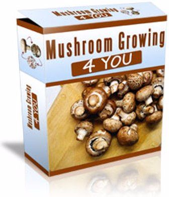 Mushroom Growing 4 You e-cover