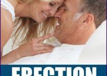 erection mastery e-cover