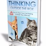 Thinking Outside The Box book cover