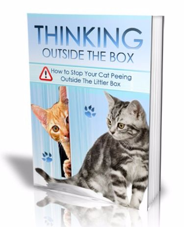 Thinking Outside The Box e-cover
