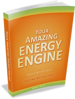 Your Amazing Energy Engine e-cover