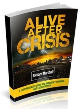 Alive After Crisis book cover