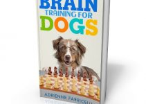 Brain Training for Dogs ebook cover