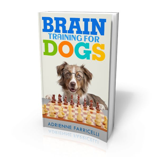Brain Training for Dogs e-cover