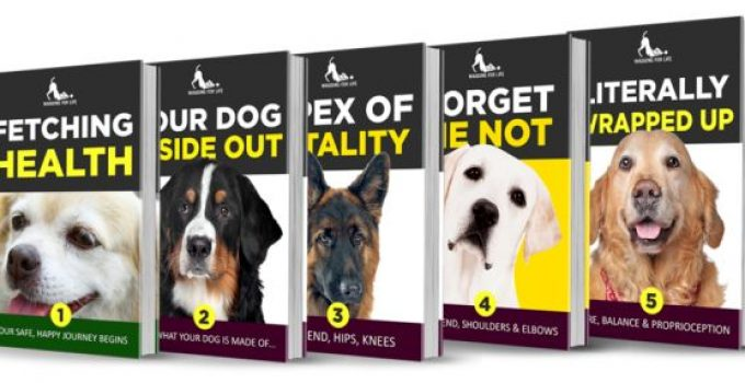 Wagging For Life e-cover