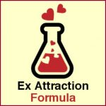 Ex Attraction Formula book cover