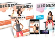 Bigness Project e-cover
