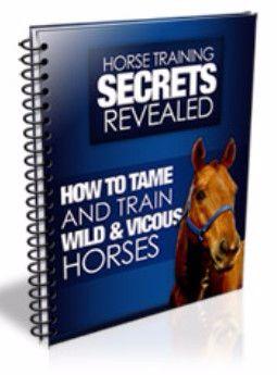 Horse Training Secrets Revealed ebook cover
