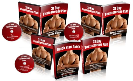 31 Day Testosterone Plan ebook cover