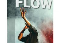 Infinite Flow Program ebook cover