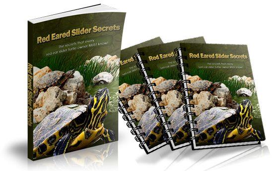 Red Eared Slider Secrets ebook cover