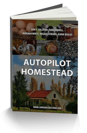 Autopilot Homestead book cover