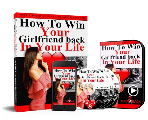 How To Win Your Girlfriend Back book cover