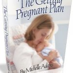 The Getting Pregnant Plan book cover